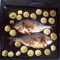 Mediterranean diet. Dorado with zucchini