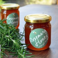 Honey is very useful for diseases epiploic appendagitis