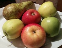 Apples and pears are useful foods in Marilu diet